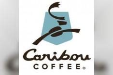 Caribou Coffee - كاريبو كوفي