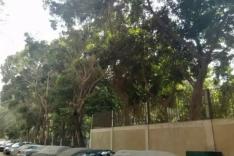 ارض للبيع فى المهندسين ناحيه ميدان لبنان