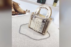 Golden Box Hand Bag with pearls