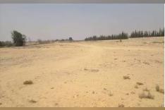 ارض الشيخ زايد 6 فدان 7 قراط موقع مميز